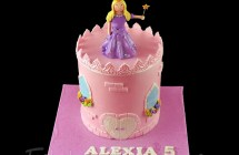 Princess / Fairies / Castle Cakes