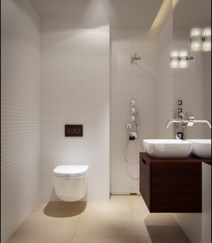 Stylish design ideas for the small bathroom for Small bathroom looks