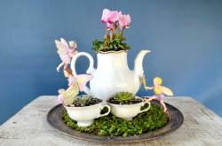Small Of Miniature Garden Ideas