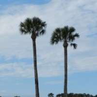 Enjoying the Views of St. Augustine, Florida