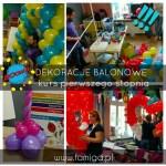Kurs dekoracji balonowych Katowice Famiga 55