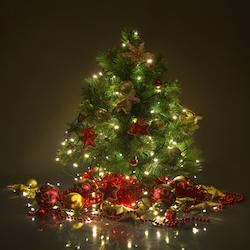 Christmas Traditions Evoke Enduring Memories