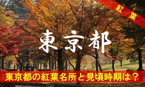 kouyou-to-2223