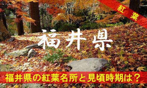 kouyou-fu-2-3027
