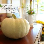 TOUCH OF AUTUMN DECOR
