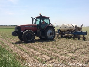 Side-dressing corn in central Illinois