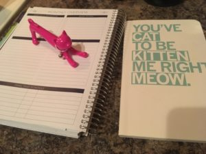 cat pen and notebook