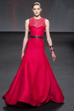 Dior Haute Couture Fall 2013 Collection