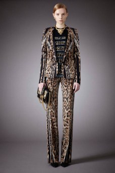 Roberto Cavalli Pre Fall 2014 Collection