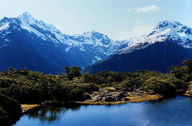 New Zealand- Destination Wedding Ideas
