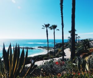 8 Amazing Reasons to Visit California