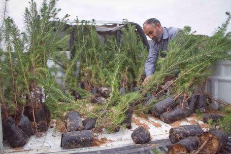 أغرسها وحط أسمك عليها شعار لحملة غرس الأشجار في بلدية صبراتة0