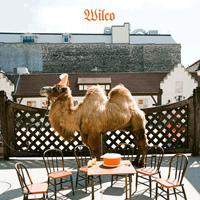 Wilco the album cover
