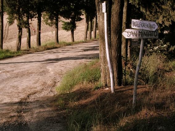 strada-azienda-vinicola-toscana