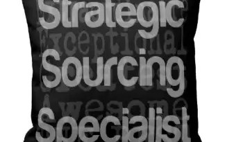 strategic_sourcing_specialist_extraordinaire_pillows-r4cca9a498dbd4467bad05939f0ff4fcb_i5fqz_8byvr_324