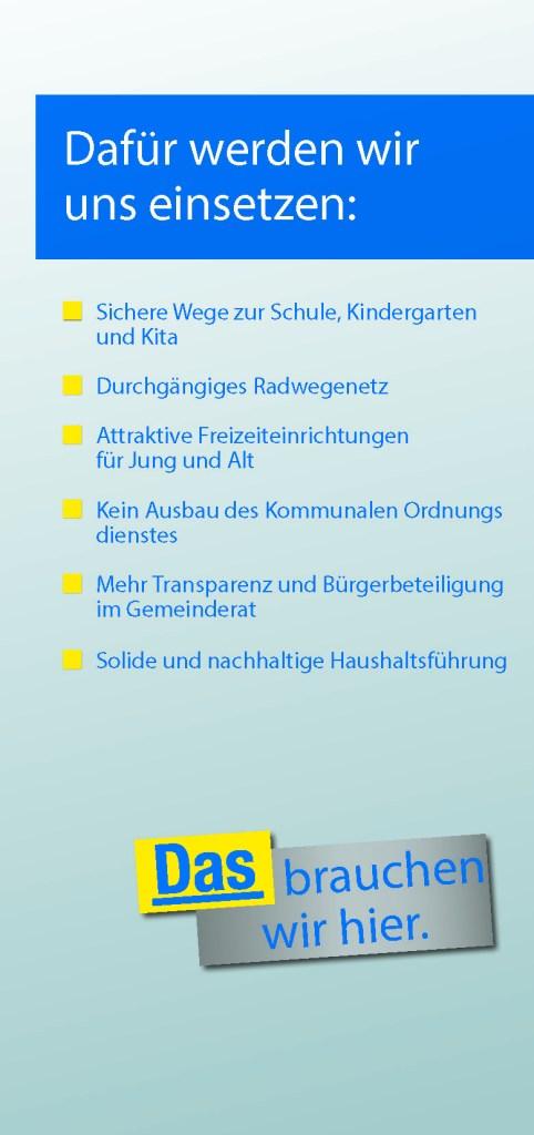 FDP Themen Kommunalwahl Ilvesheim 2014