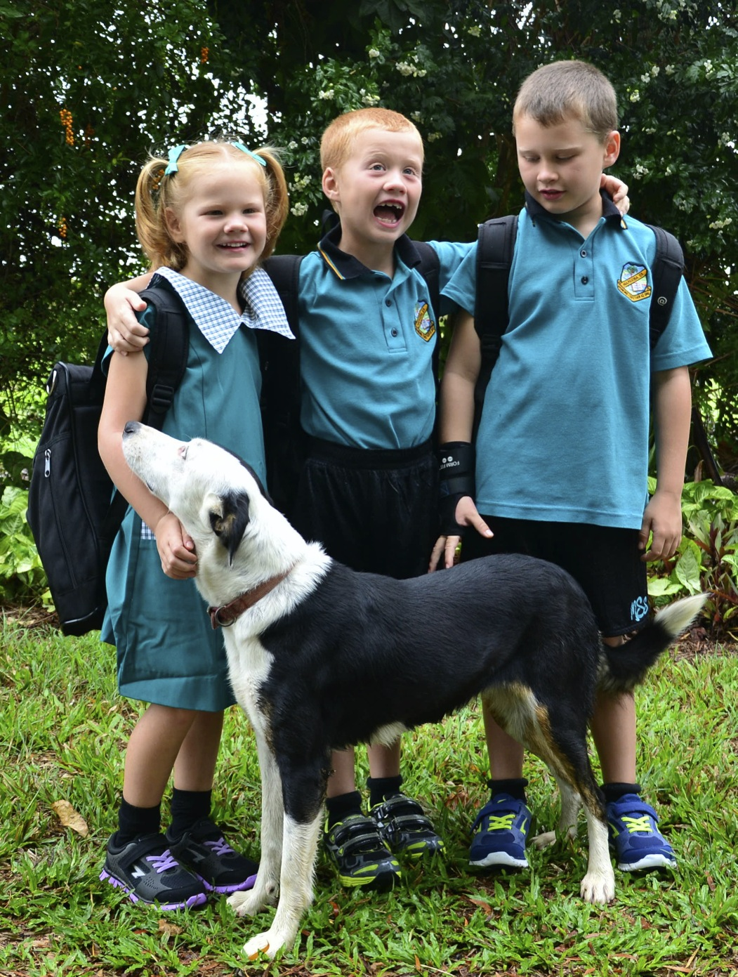 are we there yet fealy kids first day of school 2014 lexi in prep toby grade 1 jack grade 3 patches the farm dog the newest member of the family