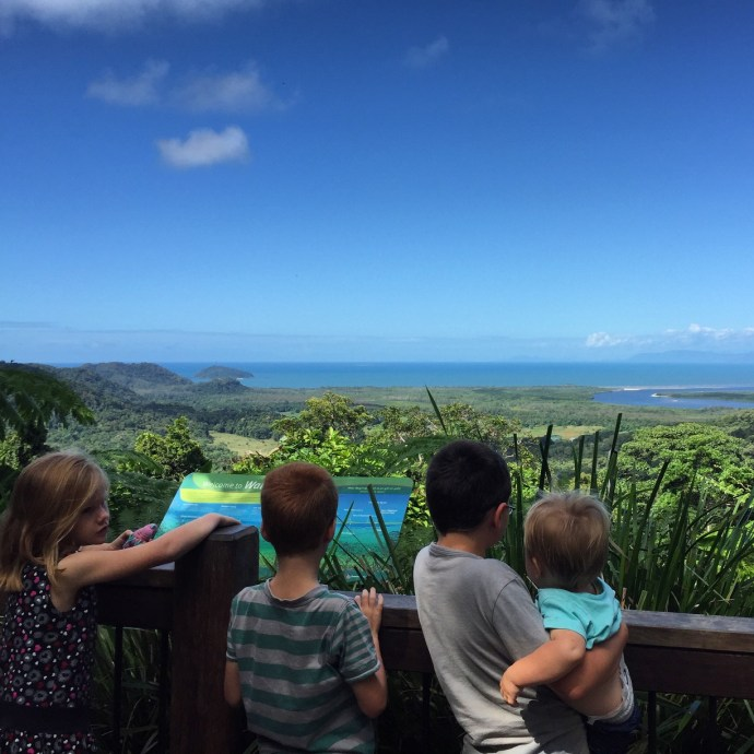 The Daintree Lookout
