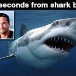 Surfer Barely Avoids Shark Attack at Byron Bay