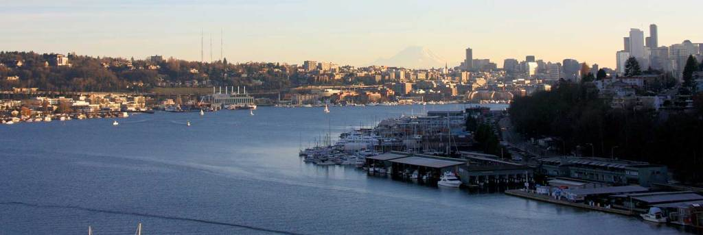 View of South Lake Union and the Seattle Skyline