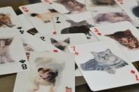 cat 3d cards