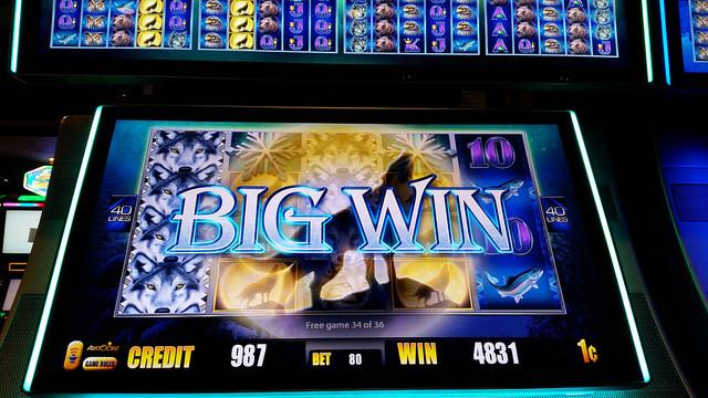 federconsumatori sicilia gioco d'azzardo slot machine