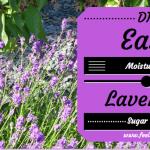 Easy DIY Lavender Sugar Scrub Recipe