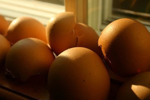 10 ways to use egg shells