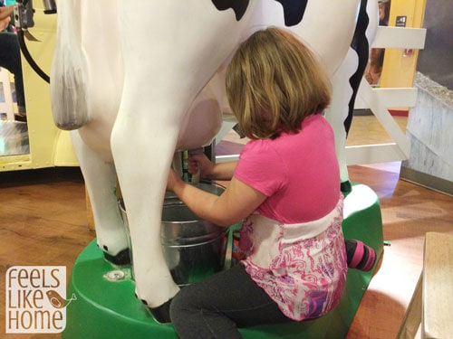 Milking a Cow at the Turkey Hill Experience