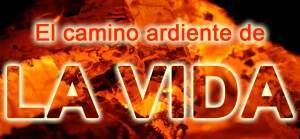 firewalking 300x139 El camino ardiente de la vida