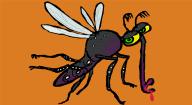 How Do You Get Dengue Fever