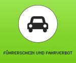 logo-fuehrerschein