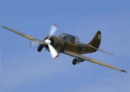 Yak-52-1