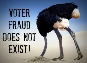 VOTE-FRAUD-Head in Sand