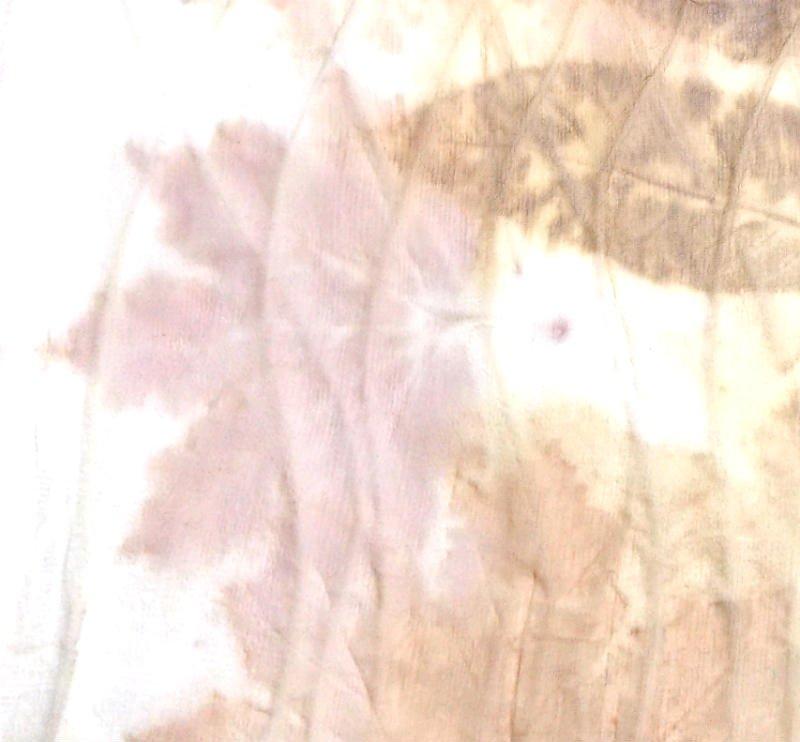 Eco Printing on Silk Chiffon, a FiberArtsy.com Tutorial