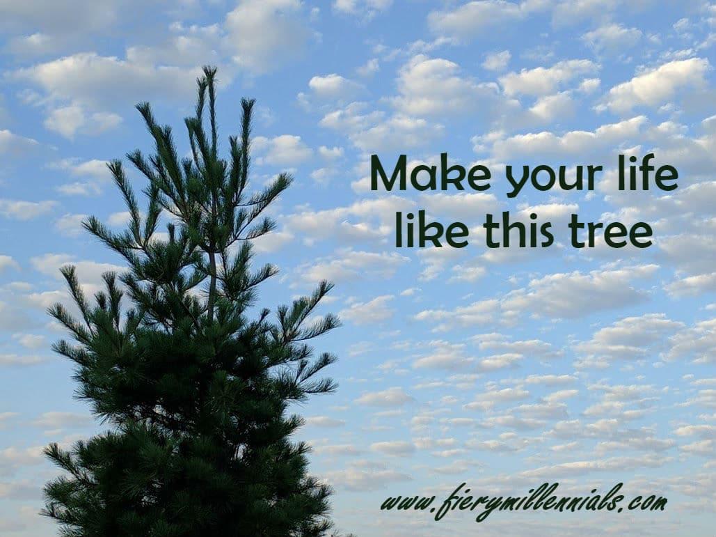 treewords