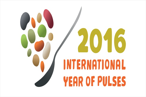 united-nations-international-year-of-pulses-2016