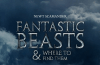 Fantastic-Beasts-and-Where-to-Find-Them-1940x888