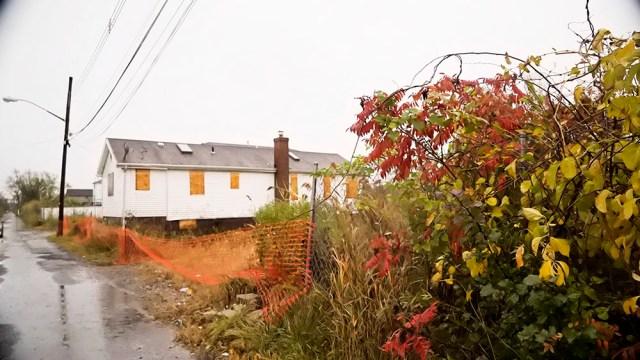 DSC03344_Autumn leaves abandoned houses
