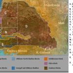 Sénégal: «il s'agit du pétrole léger d'excellente  qualité » (Petrosen)