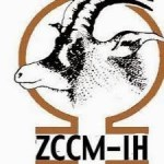 Zambie: l'Etat céde 17% de la ZCCM aux investisseurs nationaux