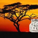 Le grand bond  des actifs africains selon PWC