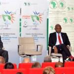 La BAD lance son » New Deal de l'énergie pour l'Afrique»