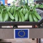 Côte d'Ivoire : l'UE subventionne la filière de la banane