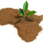 L'Union Africaine lance sa zone de libre-échange