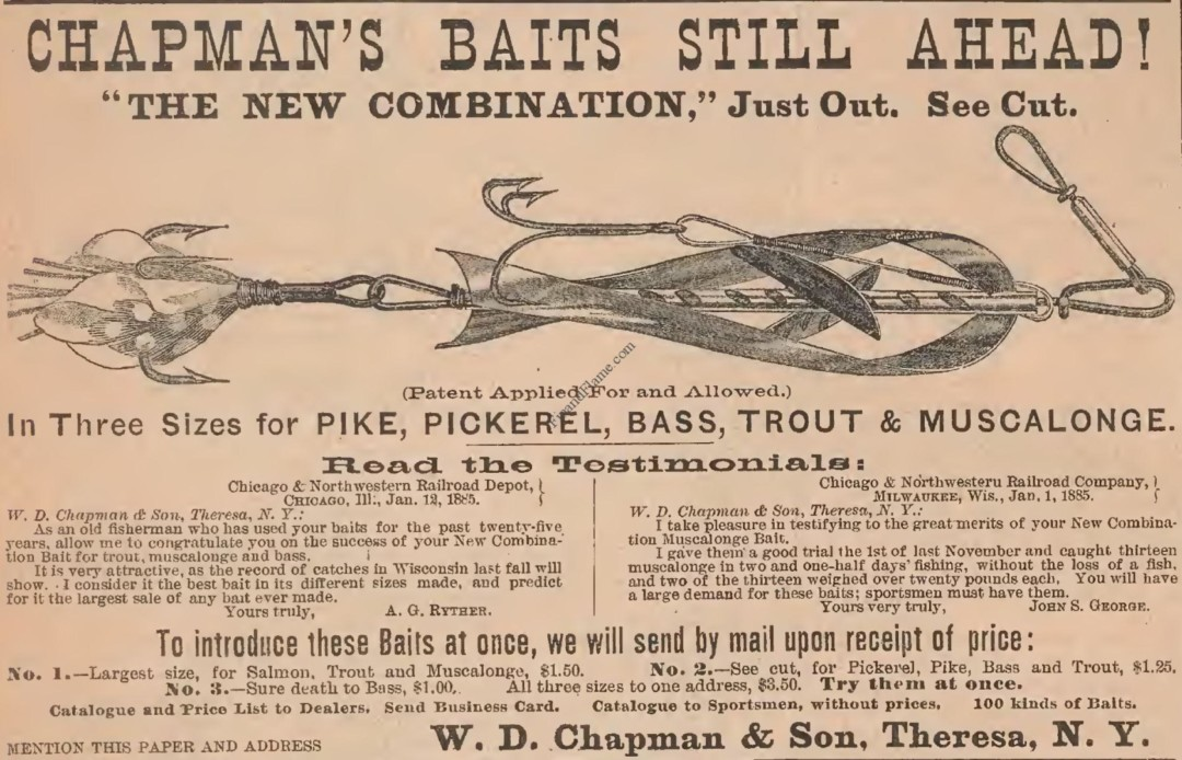 Chapman Combination Minnow Lure Ad