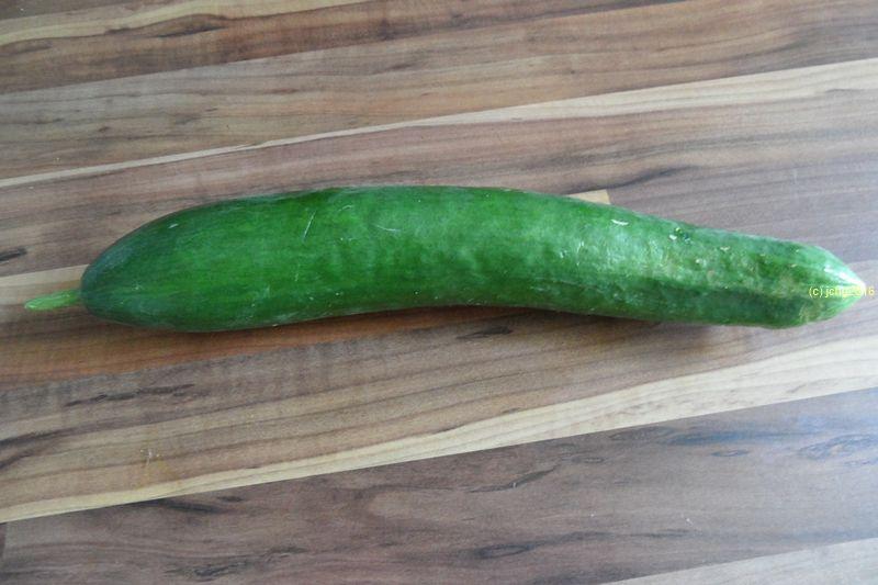 Erste Freiland-Salatgurke überhaupt bei uns 17.08.16