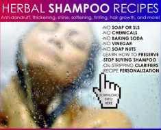 natural hair care shampoo