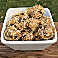 Chewy Coconut Chocolate Chip Energy Bites