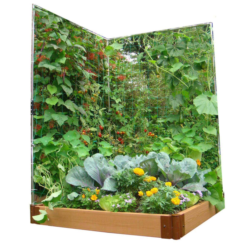 Teal Vegetable Plot Extension Wall Trellis Vegetable Using Vertical Gardening Ideas Vertical Window Garden garden Vertical Window Gardens